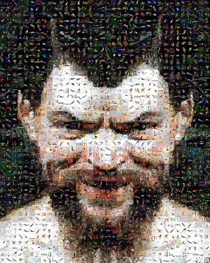 Mosaic Digital Art - Satyr Bis by Gilberto Viciedo