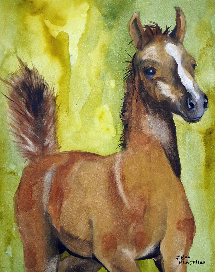 Filly Painting - Saucy by Jean Blackmer
