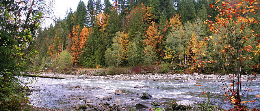 Sauk River Photograph - Sauk River Fall Colors Panorama by Mary Gaines