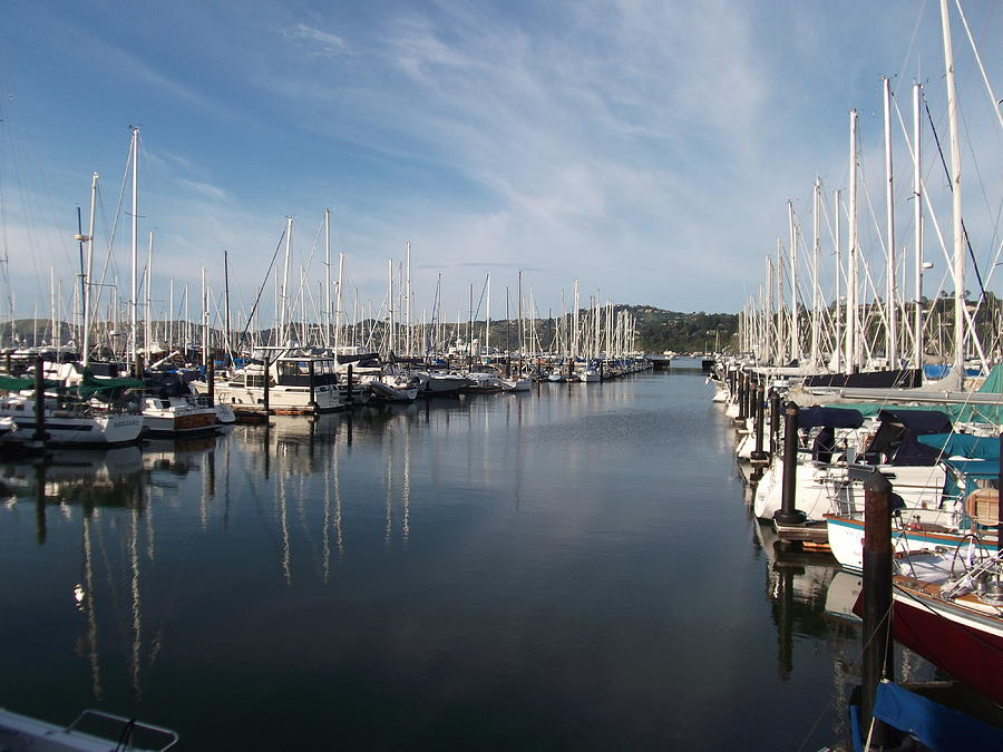 Sausalito Yacht Harbor - The Best Harbor In The San Francisco Bay Area