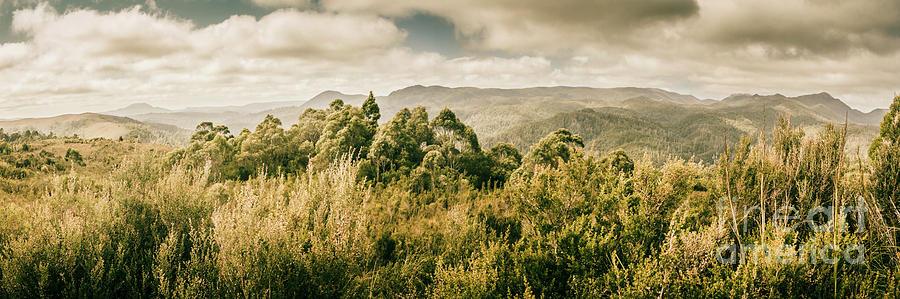 Bushland Photograph - Savage River Lookout, Tarkine, Tasmania by Jorgo Photography - Wall Art Gallery