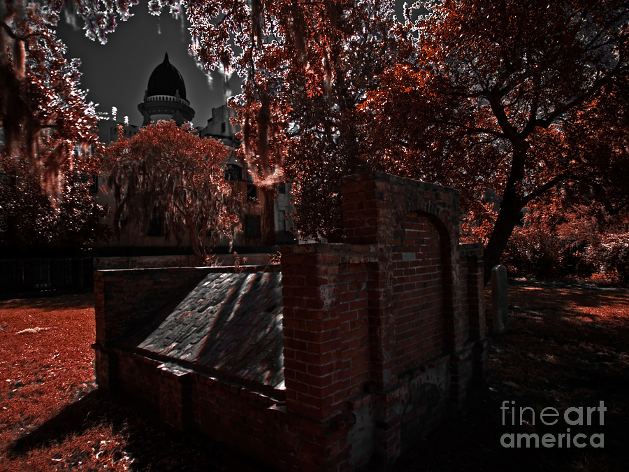 Savannah Photograph - Savanna Georia Colonial Park Cemetery Color Infrared 500 by Rolf Bertram