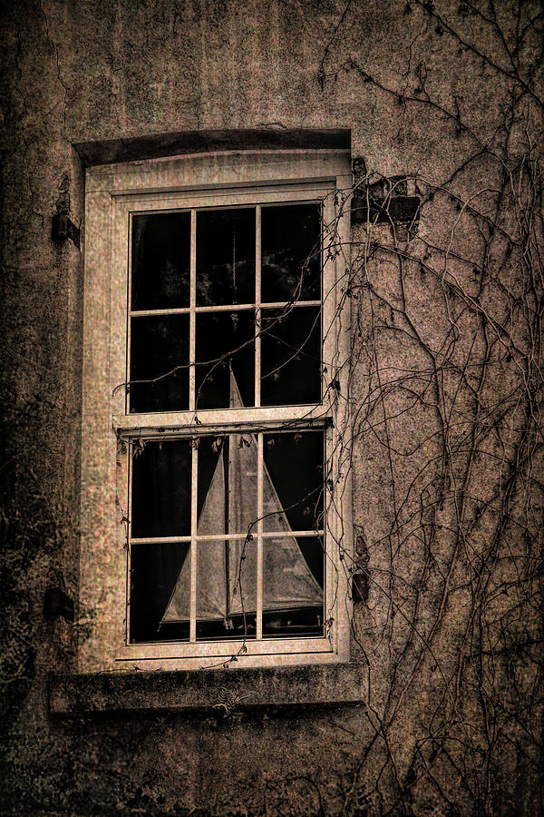 Window Photograph - Savannah Sail Art by JAMART Photography