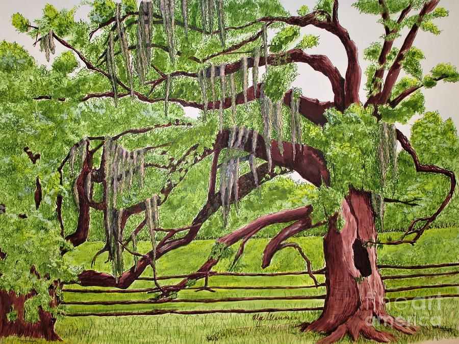Savannah's Spanish Moss by Olga Silverman