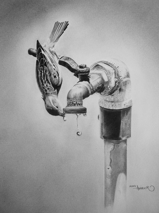 Photo drawing save water by xeno haider