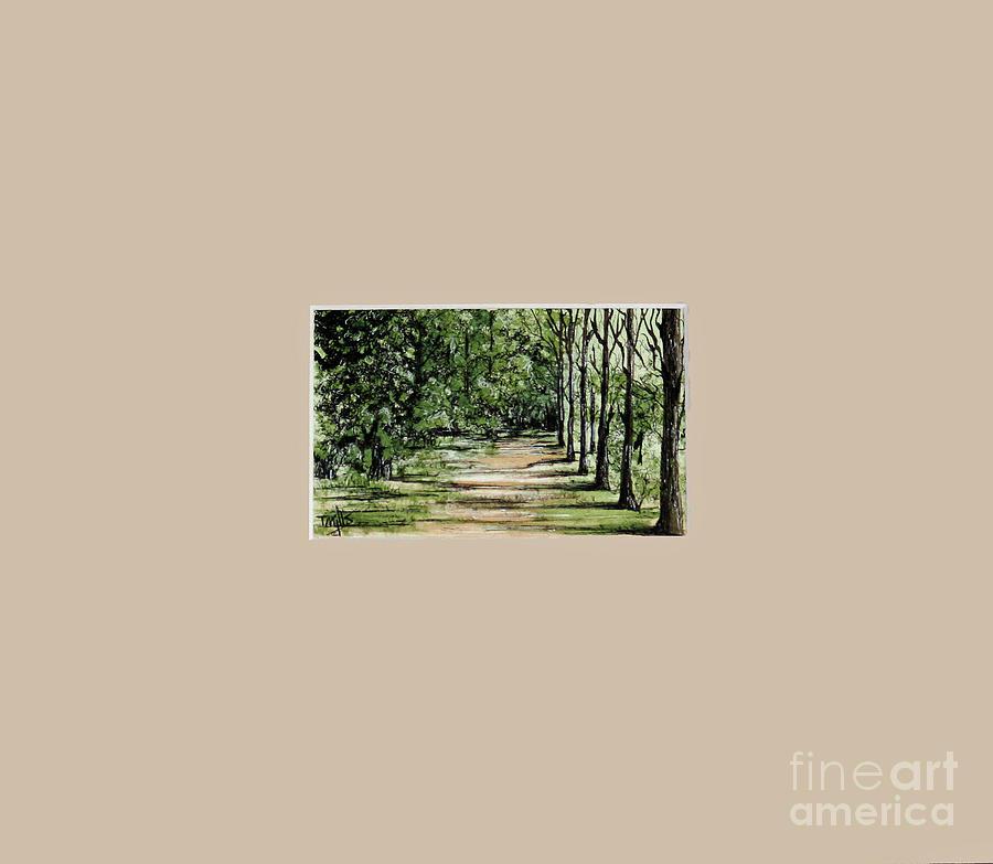 Sawgrass by Terri Mills