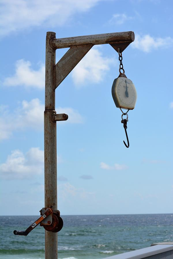 Pier Photograph - Scales by Tamra Lockard