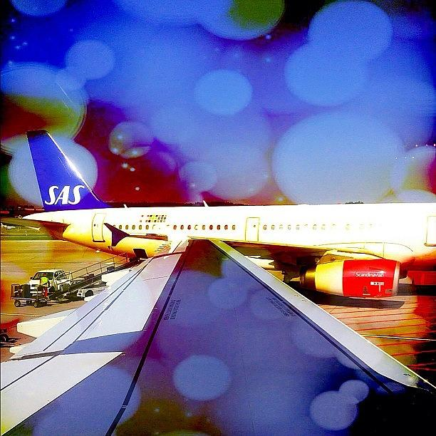 Fly Photograph - Scandinavian Airlines #sas #flysas by Dimitre Mihaylov