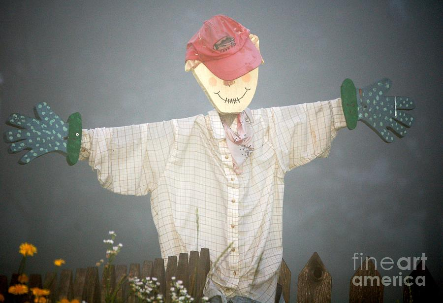 Diane Berry Photograph - Scarecrow In Fog by Diane E Berry
