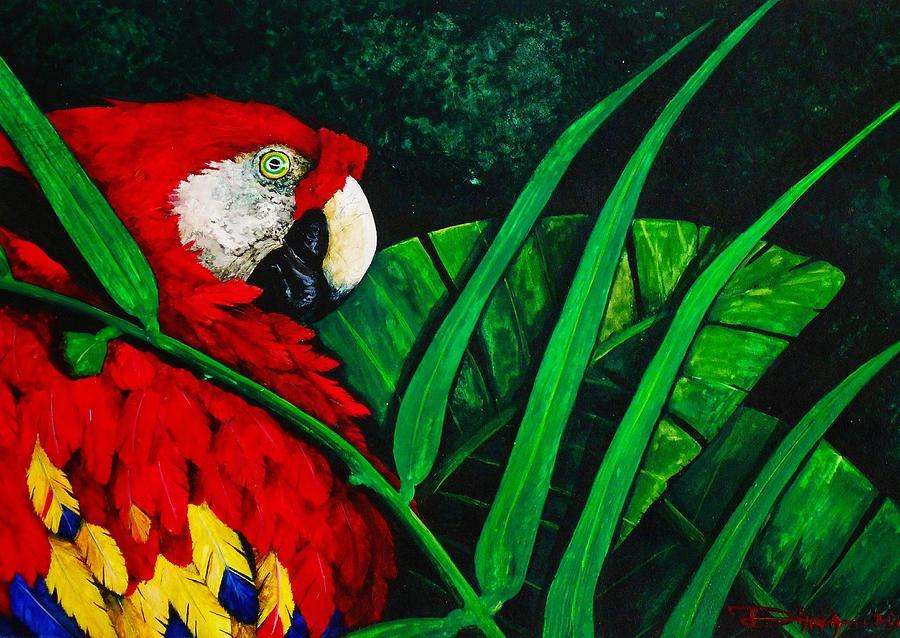 Birds Painting - Scarlet Macaw head study by Dana Newman