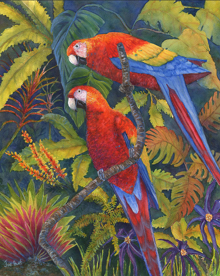 Birds Painting - Scarlet Macaws by June Hunt