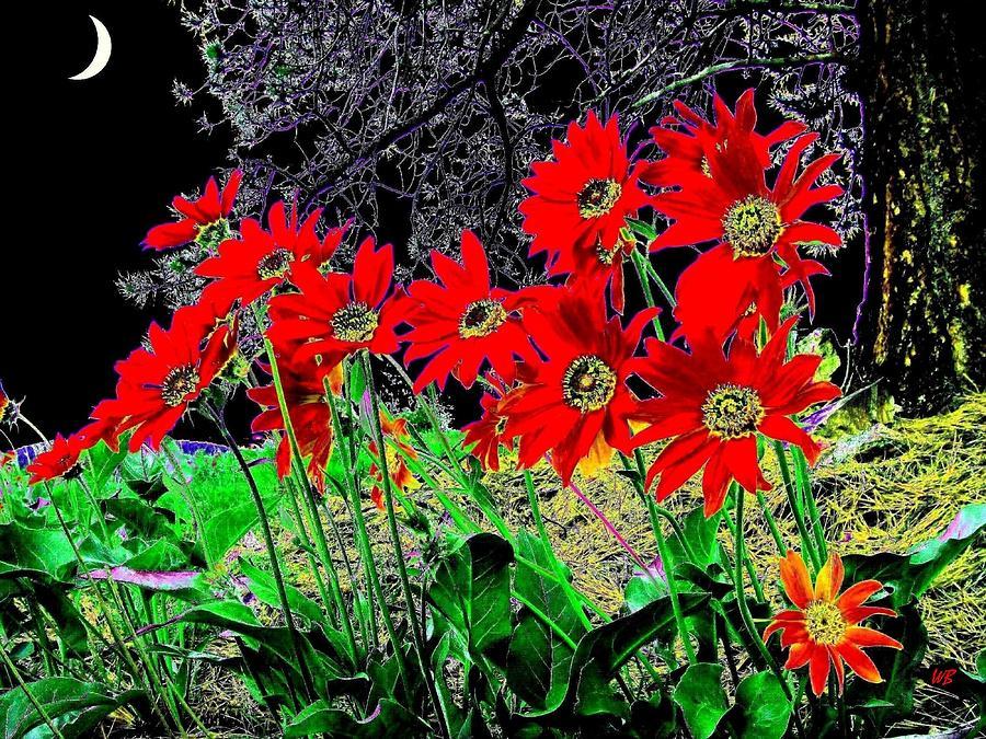 Abstract Digital Art - Scarlet Night by Will Borden