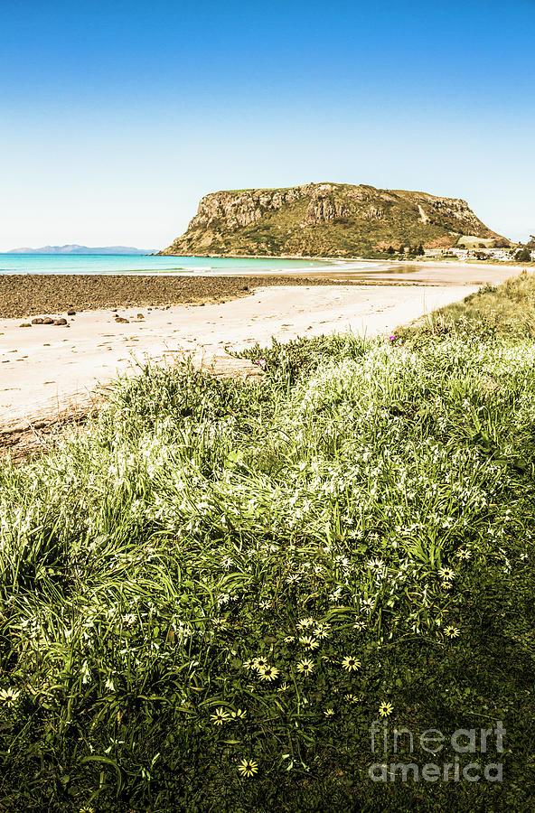 Scenic Photograph - Scenic Stony Seashore by Jorgo Photography - Wall Art Gallery