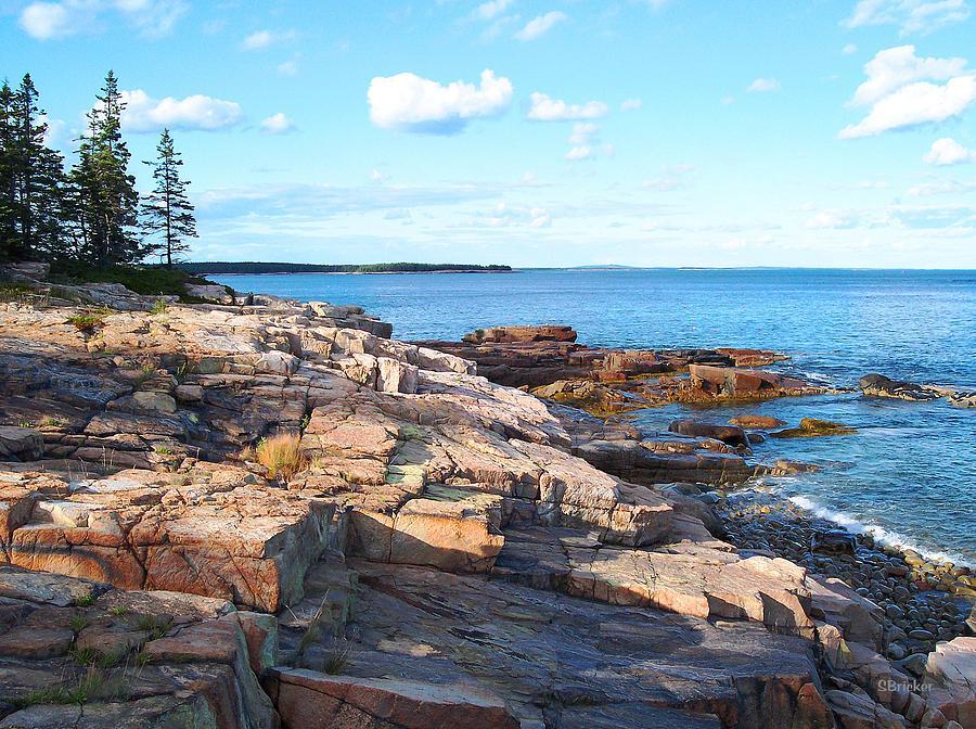 Seascape Photograph - Schoodic Shoreline  by Scott  Bricker