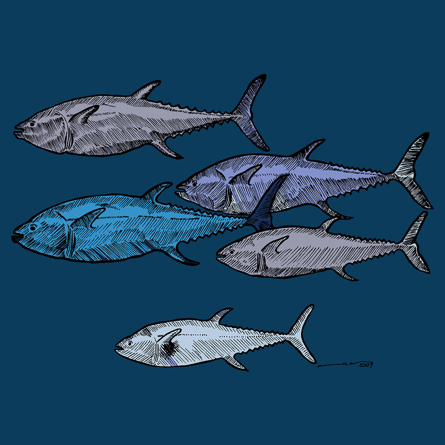 It's just an image of Crafty School Of Fish Drawing