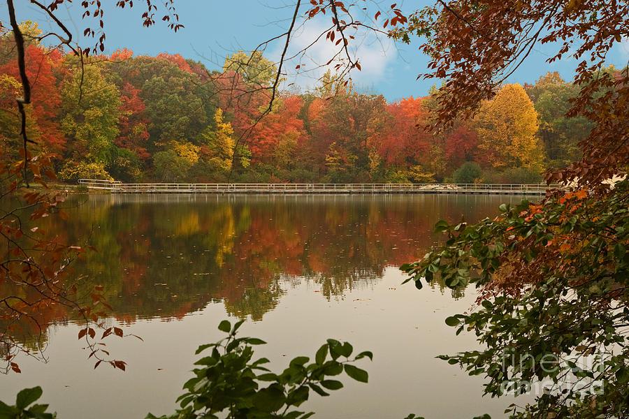 Park Photograph - Schooleys Mountain Park by Robert Pilkington