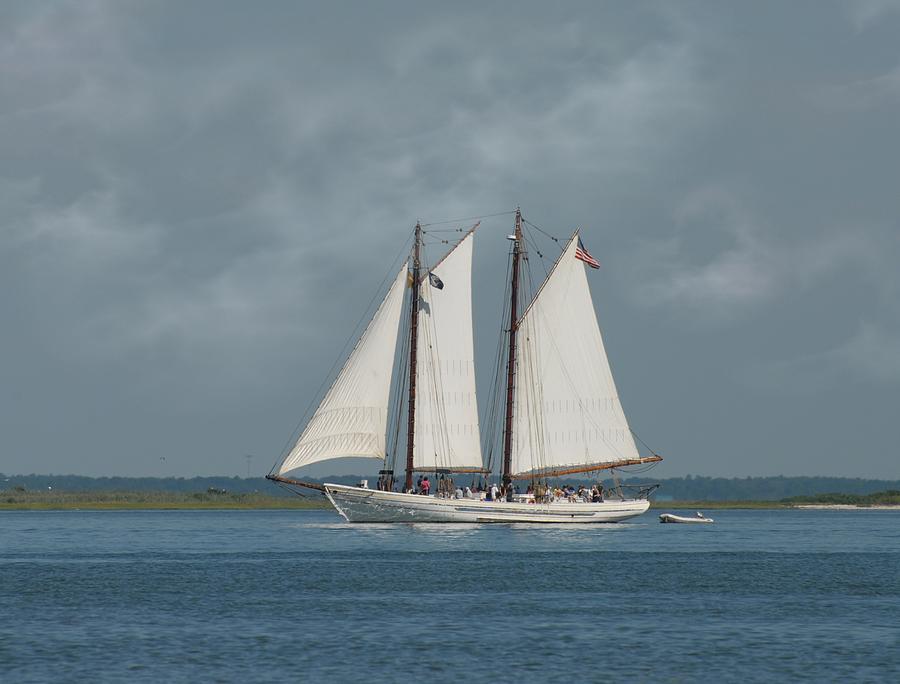 Sailing Ship Photograph - Schooner A. J. Meerwald 1 by Joyce StJames