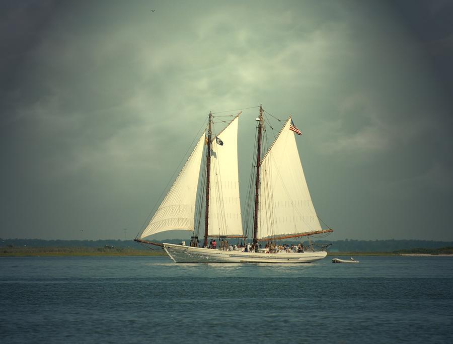 Sailing Ship Photograph - Schooner A. J. Meerwald 4 by Joyce StJames