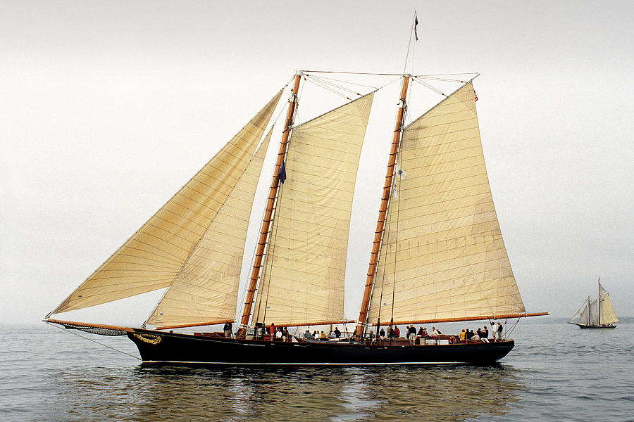 Windjammer Photograph - Schooner America by Fred LeBlanc