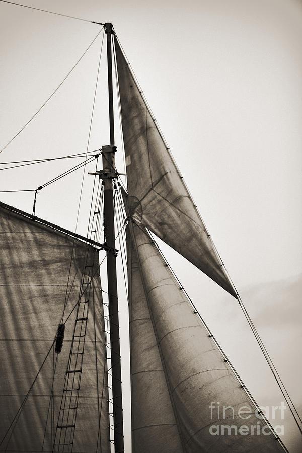 Tall Ship Photograph - Schooner Pride Tall Ship Yankee Sail Charleston Sc by Dustin K Ryan