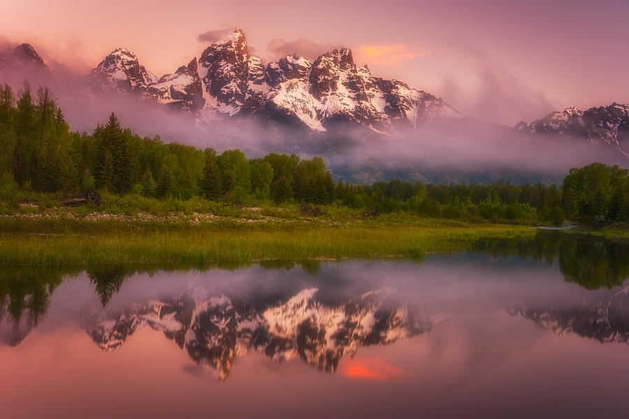 Foggy Photograph - Schwabacher Sweets by Darren  White