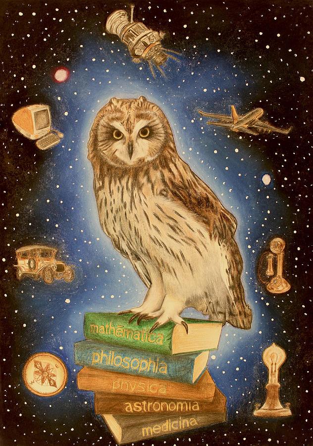 Owl Drawing - Scientia by Nikolai Jonasson