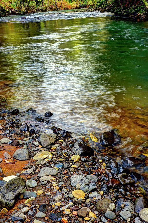 Scoggins Creek 2 Photograph