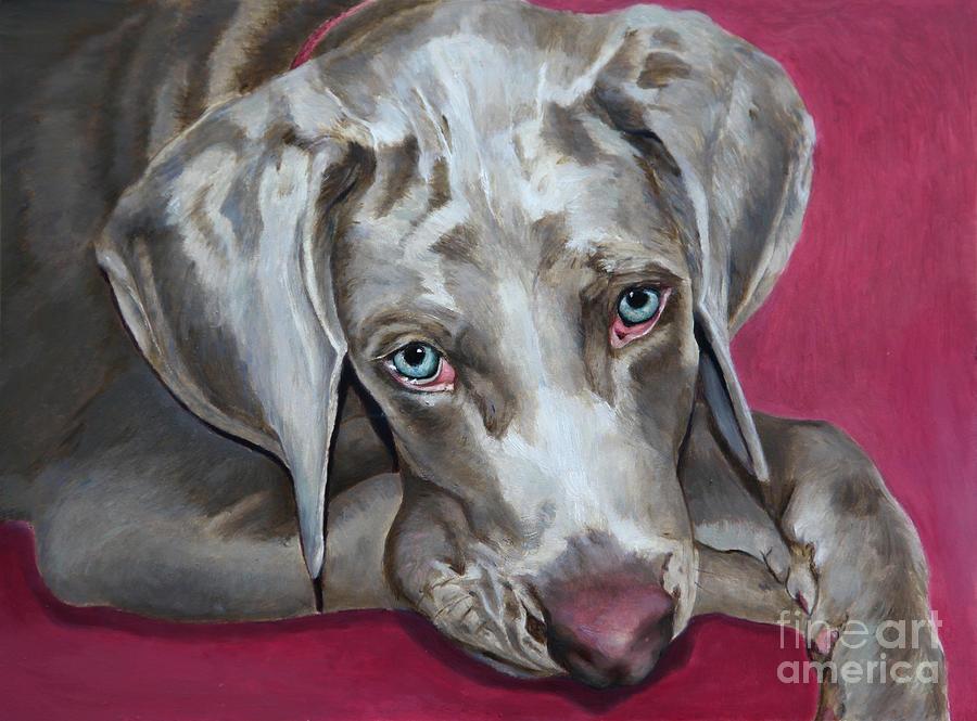Animals Painting - Scooby Weimaraner Pet Portrait by Enzie Shahmiri