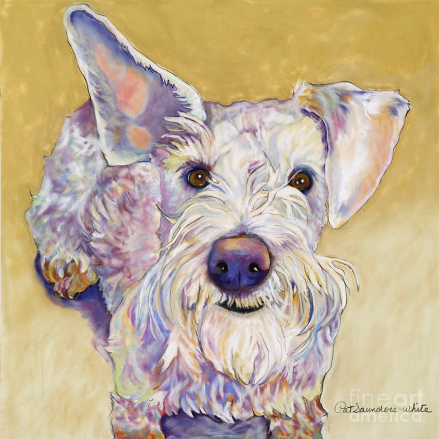 Schnauzer Pastel - Scooter by Pat Saunders-White