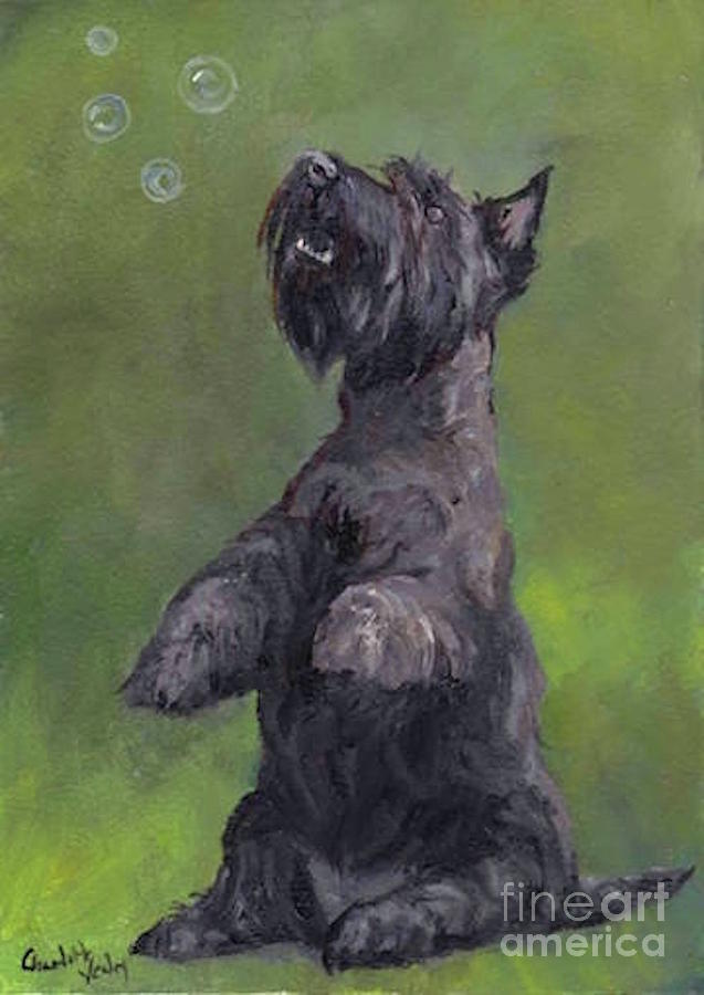 Scottish Terrier Painting - Scottie Likes Bubbles by Charlotte Yealey