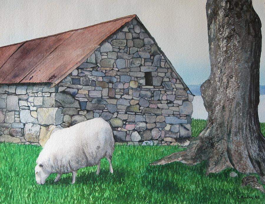 Sheep Painting - Scottish Sheep by Sharon Farber