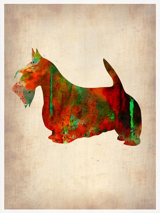 Scottish Terrier Painting - Scottish Terrier Watercolor 2 by Naxart Studio