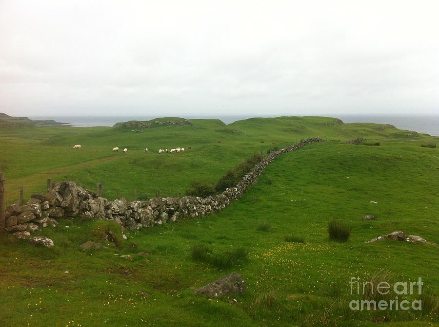Scottish Wall by Mary K Conaboy
