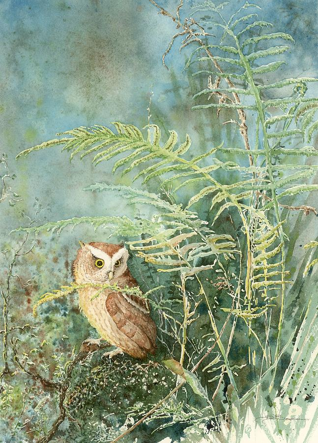 Bird Painting - Screech Of Inglis Island by Sharon Bowman