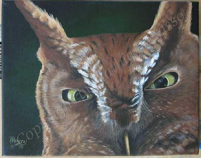 Owl Painting - Screech Stares by Kathie Papasso