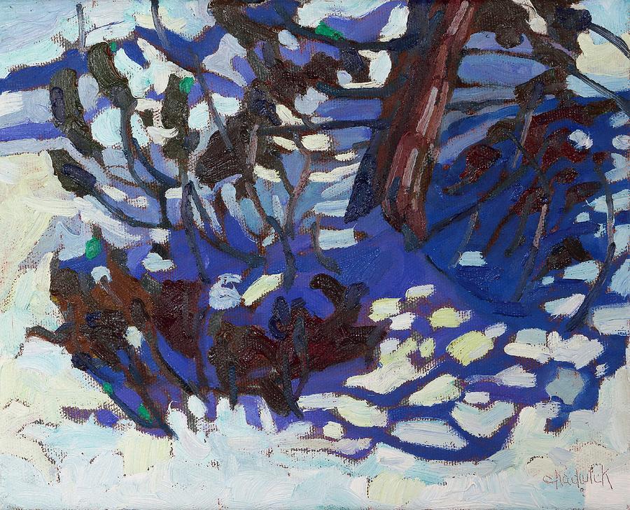 February Painting - Scrub Red Cedar by Phil Chadwick