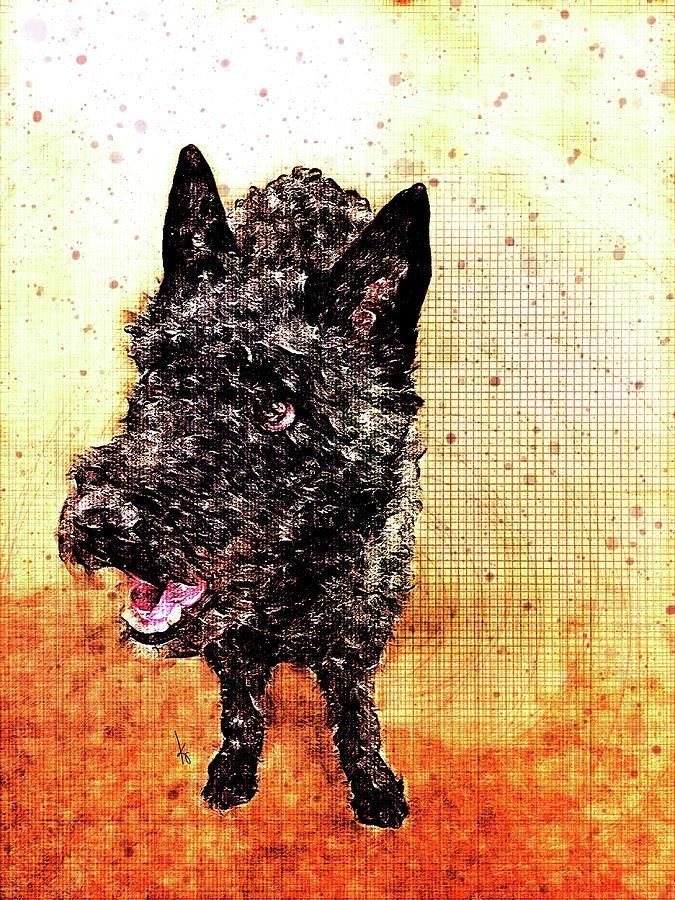 Scruffy Dog Digital Art by Krista Droop