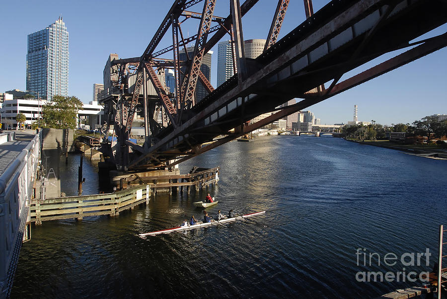 Sculling Photograph - Sculling The Hillsborough by David Lee Thompson