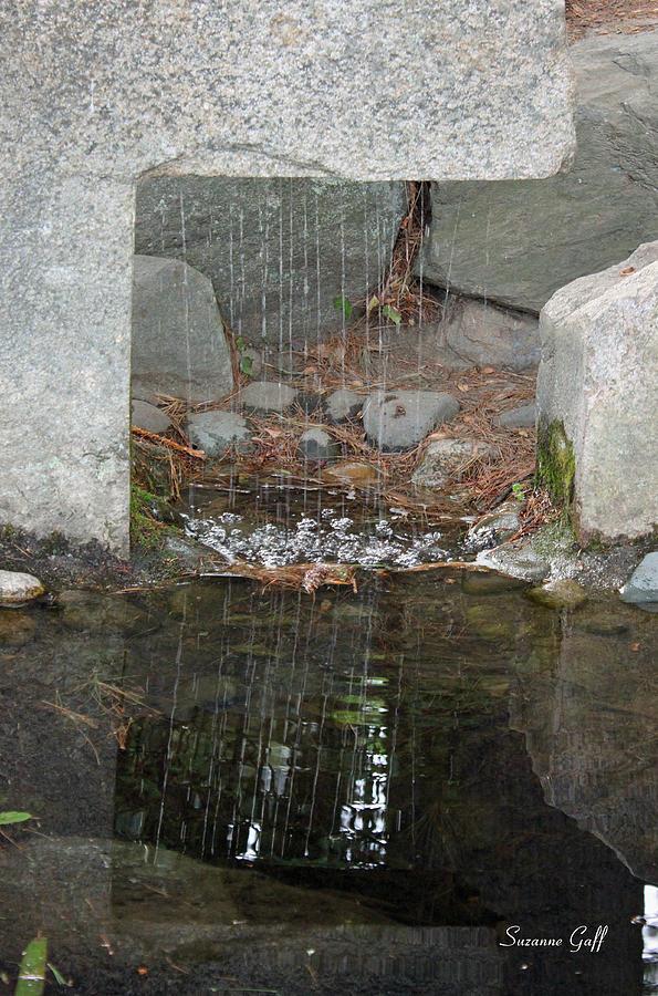 Sculpture Garden Photograph - Sculpture Garden II by Suzanne Gaff