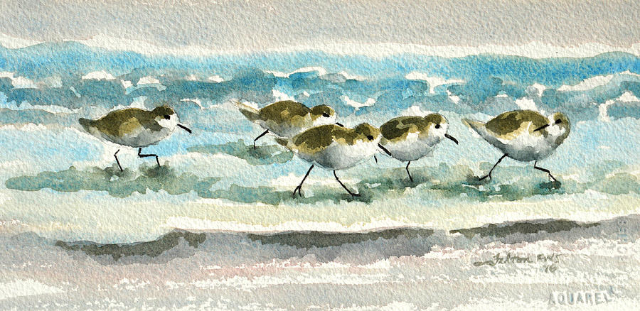 Scurrying along the shoreline 2  1-6-16 by Julianne Felton