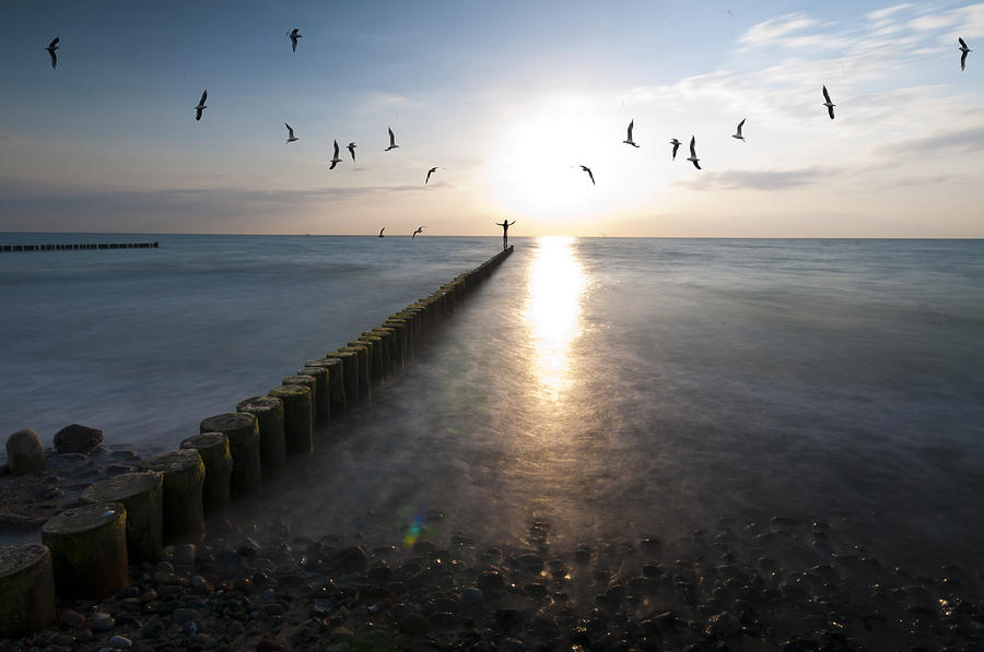 Sea Photograph - Sea Birds Sunset. by Nathan Wright