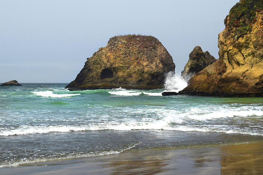 Sea Cliffs by Frank Wilson