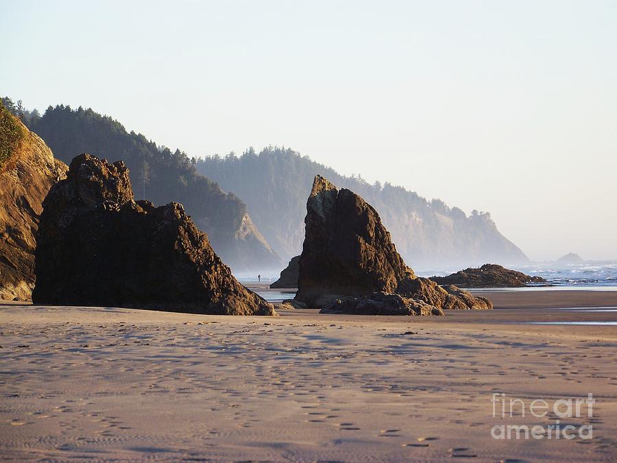 Sea Cliffs by Julie Rauscher
