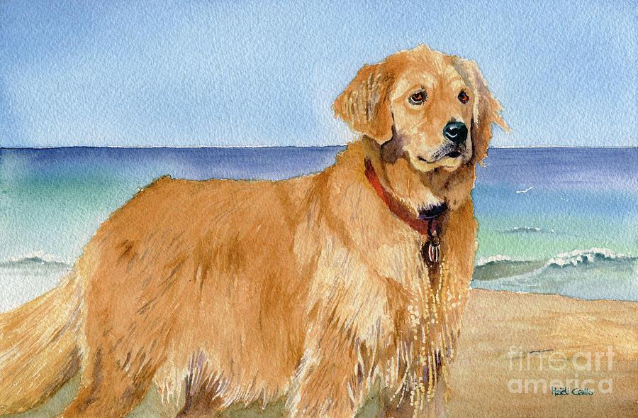 Sea Dog by Heidi Gallo