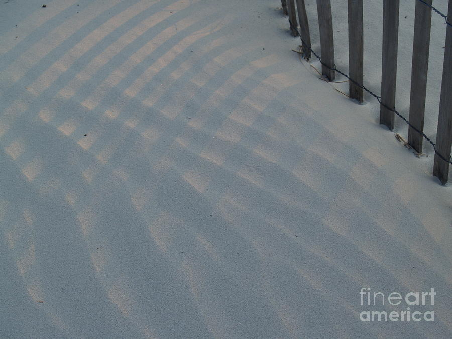 Sand Dune Photograph - Sea Fence At Hunting Island by Anna Lisa Yoder