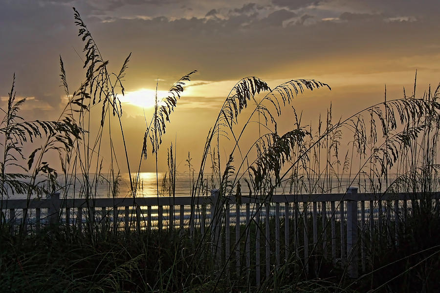 Beach Photograph - Sea Oat Sunset by HH Photography of Florida
