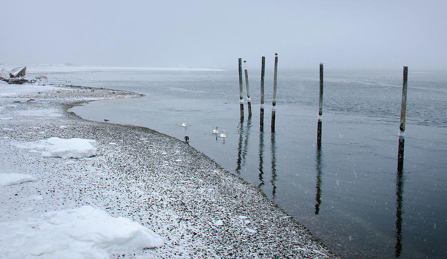 Sea Of Gray Photograph