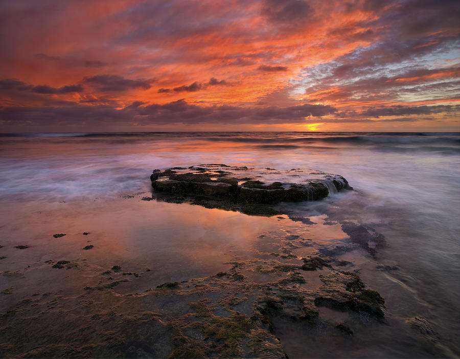 Sea Photograph - Sea Of Red by Mike  Dawson