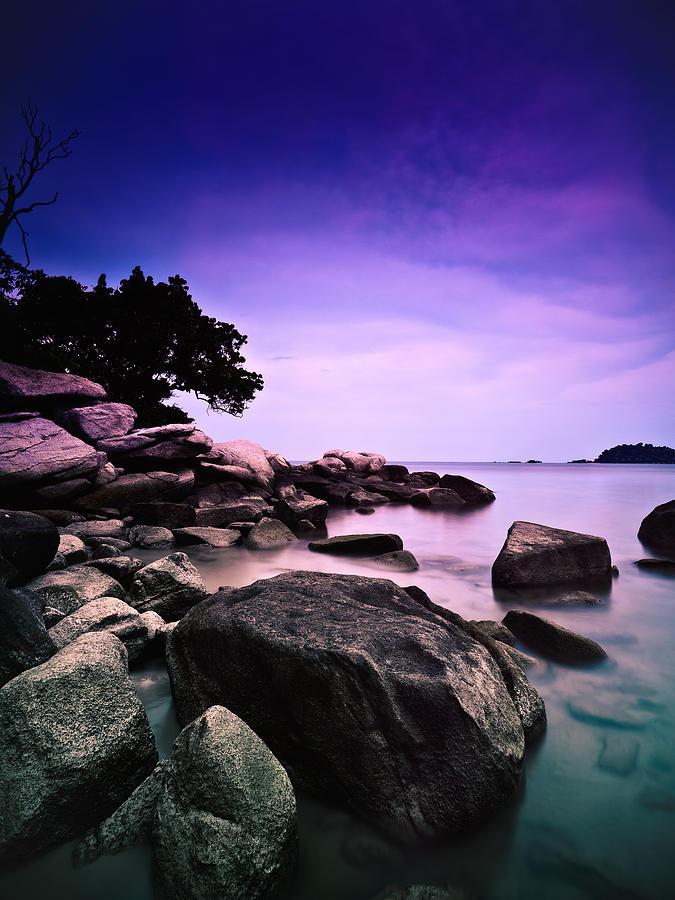 Sea Of Sorrow Photograph