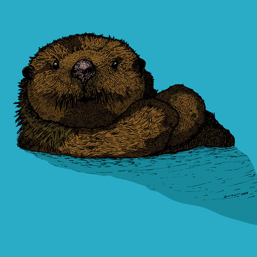 Sea Otter - Full Color Drawing by Karl Addison
